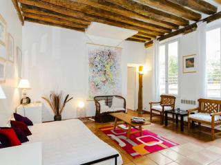 Large Architect flat - Hypercentral - 68m2 - Paris vacation rentals