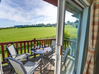 2 bedroom Cottage with Internet Access in Trefeglwys - Trefeglwys vacation rentals