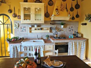 Casa Bella Vista - historic apartment in Medieval village + garden near Pisa - Vicopisano vacation rentals