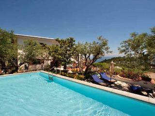 VILLA SIRENA Marina del Cantone - Sorrento area - Marina del Cantone vacation rentals
