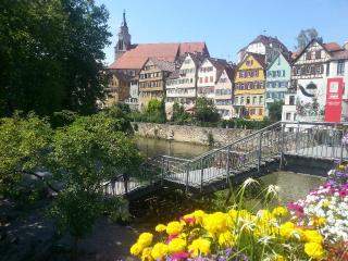 Vacation Apartment in Tübingen - 463 sqft, quiet, comfortable (# 2198) - Tübingen vacation rentals