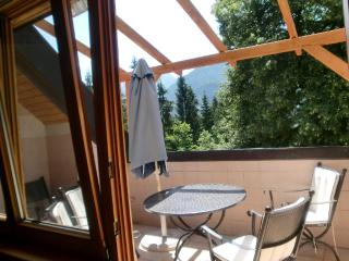 Vacation Apartments in Dellach im Drautal - 753 sqft, lake, bike, family - Schmelz vacation rentals