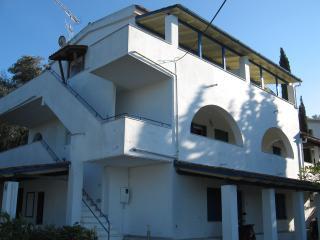 CARDIA Studio ALFA