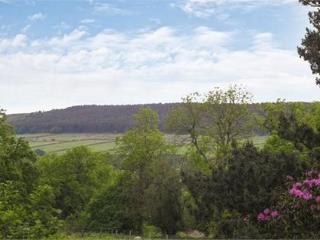 The Pinewood Manor Estate - Ripon vacation rentals