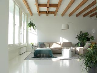 Misses Pannevis Your urban luxury hideaway - Delft vacation rentals