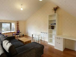 2 BED SPLIT LEVEL APARTMENT/DUPLEX CENTRAL LONDON - London vacation rentals