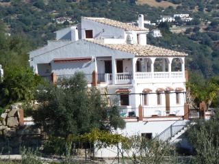Villa at low cost value, private pool and wifi - Periana vacation rentals