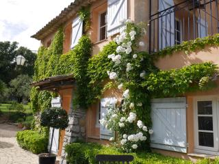 villa lavande for romantic travelers - Grasse vacation rentals