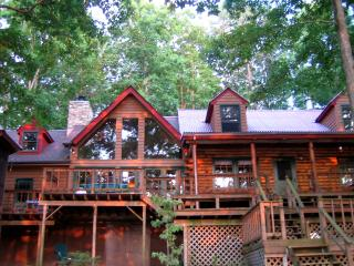 Lake Cabin Retreat - Waterfront ->SPECIALS! - Mineral vacation rentals