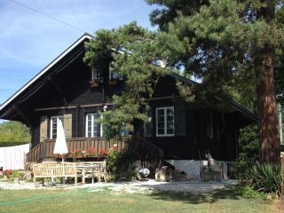Charming Chalet close to lake and Geneva - Mies vacation rentals