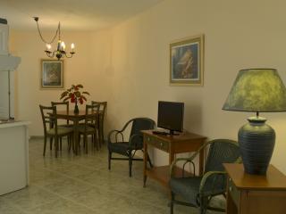 1 Bedroom Apt, EDF Emma 5. - Los Cristianos vacation rentals