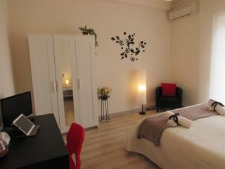 Penthouse with terrace in Rome - Rome vacation rentals