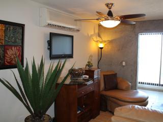 1BED CONDO IN THE HEART OF SAN JOSE DEL CABO - San Jose Del Cabo vacation rentals