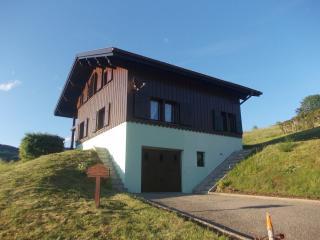 Chalet à la montagne tout confort - Fresse-sur-Moselle vacation rentals