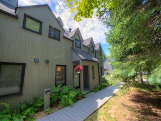 Cozzy Chalet with inside pool, sauna and fireplace - Saint Sauveur des Monts vacation rentals