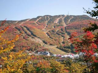 Chambre Le Sommet à L'Évasion gîte et refuges - Mont-Tremblant National Park vacation rentals