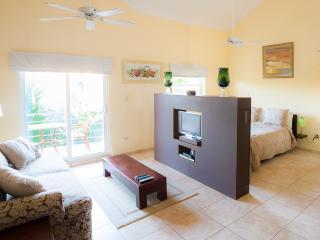 OCEAN DREAM High Ceiling Bchfrnt Studio w/balcony - Cabarete vacation rentals