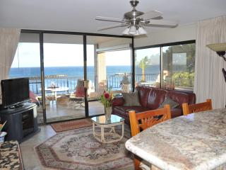Perfect Condo with Internet Access and A/C - Maalaea vacation rentals