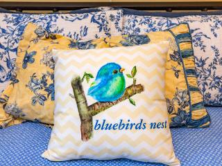 """Bluebirds nest"" - POOL/GYM - Nashville vacation rentals"