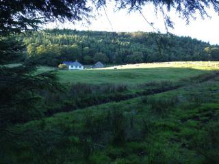 Modern Eco House, Coed Y Brenin, Dolgellau, Wales - Llanfachreth vacation rentals