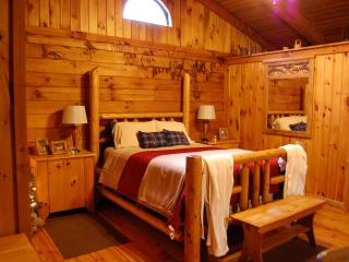 Nice Cabin with Satellite Or Cable TV and A/C - Rockbridge vacation rentals