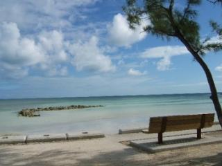 The Ultimate Tourism Experience - Nassau vacation rentals
