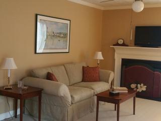 Cozy 2 bedroom Aiken Villa with Satellite Or Cable TV - Aiken vacation rentals