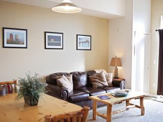 Western Lodge Design Loft in Olde Town Arvada #313 - Arvada vacation rentals