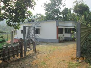 Bright 4 bedroom Villa in Vythiri with Television - Vythiri vacation rentals