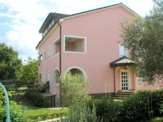 Apartment BUTTERFLY - Vantačići - Vantacici vacation rentals