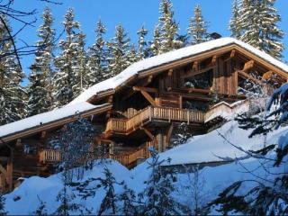 Luxury Meribel Chalet with Ski in/Ski Out Access - Meribel vacation rentals