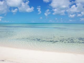 NEW Luxury beachfront villa! private beach&hot tub - Tarpum Bay vacation rentals
