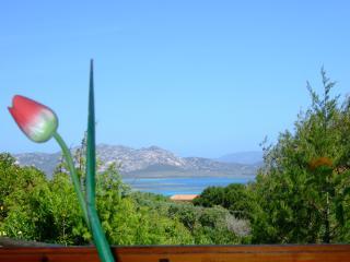Wonderful 4 bedroom Stintino House with Balcony - Stintino vacation rentals