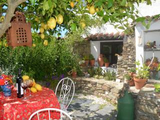 Sunflower Cottage Rural Portugal - Castelo Branco vacation rentals
