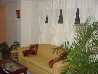 Comfortable 9 bedroom Petionville Apartment with Internet Access - Petionville vacation rentals