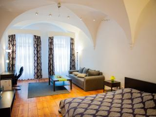 Cozy Sibiu Apartment rental with Internet Access - Sibiu vacation rentals