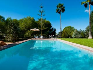 Son Florit - Ses Salines vacation rentals