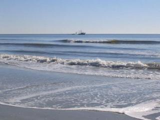 Winter Special Oceanfront - Hilton Head vacation rentals