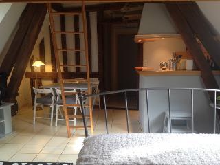 Charmant duplex ville médiévale 4p - Chartres vacation rentals