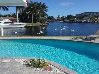 Spectacular Backyard Playground on the Water - Pompano Beach vacation rentals
