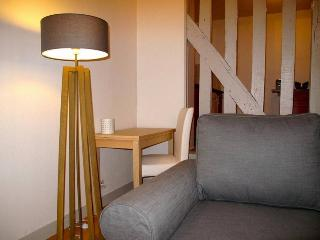 charmant et grand appartement hyper centre 6p - Chartres vacation rentals