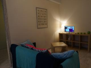 charmant appartement 4p hyper centre - Chartres vacation rentals