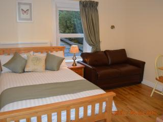 Beautiful new studio, wonderful location slps 3.  Quiet and peaceful location - Dublin vacation rentals