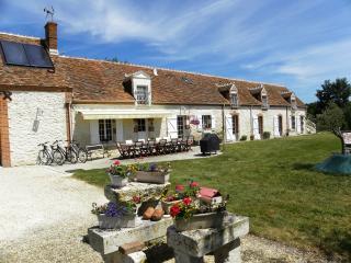 4 Chambres d'hôtes La Quèrière Mur de Sologne - Mur-de-Sologne vacation rentals