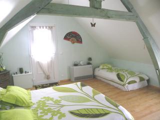Chambres d'hôtes La Quèrière - les Bambous - - Mur-de-Sologne vacation rentals