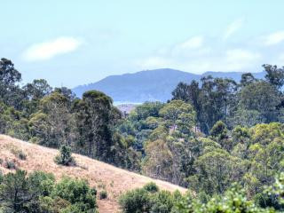 Wine Country-San Francisco Bay Area LUX VIEW HOME! - San Rafael vacation rentals