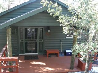 Gorgeous 2 bedroom Cabin in Prescott with Deck - Prescott vacation rentals