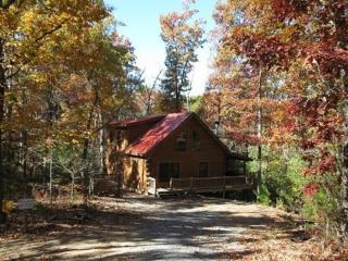 Whitetail Ridge- Blue Ridge cabin rental - Morganton vacation rentals