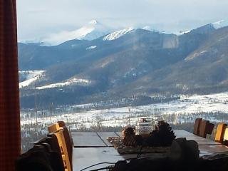 Winter Park/Granby Ski Cabin - Winter Park vacation rentals