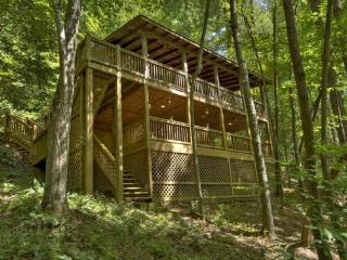 Lil' Beaver- Blue Ridge waterfront cabin rental - Blue Ridge vacation rentals
